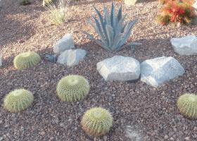 desertlandscapeRIGHT