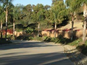 carlsbad landscaping