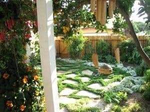 water wise landscape garden