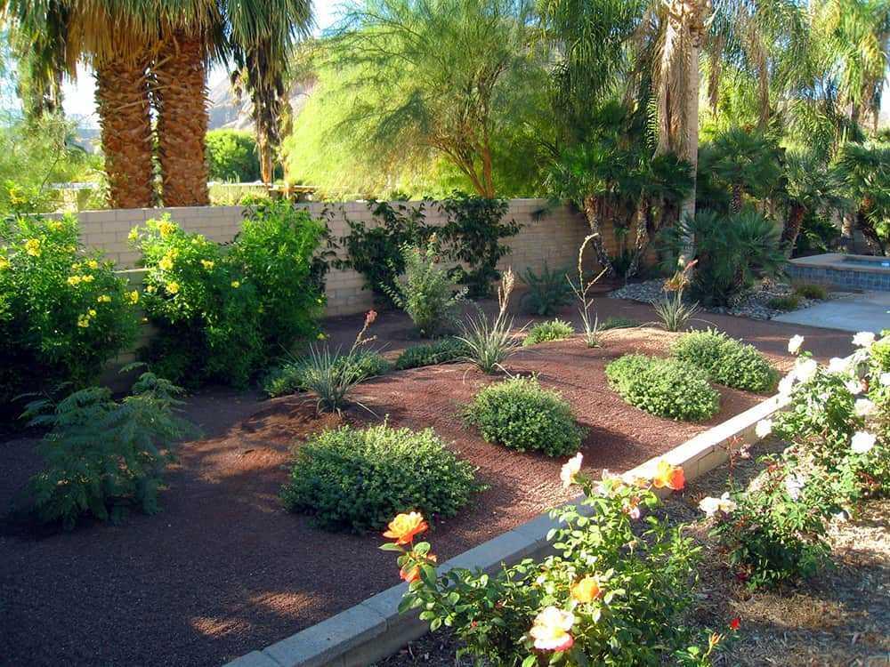 water wise garden 1