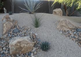 desert landscape left